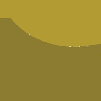 Dametra Logo